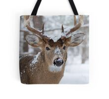 ♫Let it snow, ♪ let it snow, let it snow ♫ Tote Bag