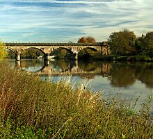 Railway Viaduct at Waterside, Stapenhill by Rod Johnson
