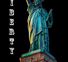 Liberty Dark by Steve Purnell