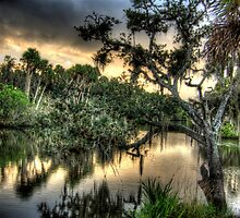 White City Park View.  Fort Pierce , Florida by jim1911