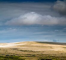 Ter Hill on Dartmoor by Nick Jenkins
