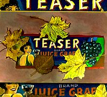 Teaser-Fruit Label by Ellen Turner