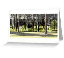 A Stand of Pines Greeting Card