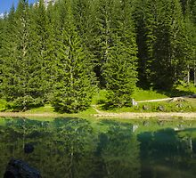Green alpine lake in the summer and mountain peak in the Alps - Il paradiso verde by visionitaliane