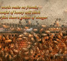 Inspiration - Apiary - Bee's - Sweet success - Ben Franklin by Mike  Savad