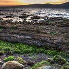 Foreshore Green - Hobart, Tasmania by clickedbynic