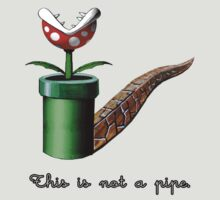 Super Mario for Magritte (English Version) by The Flaming  Potato