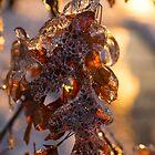 Ice Storm 2013 - Oak Leaves Jewelry by Georgia Mizuleva
