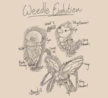 Weedle Evolution by Deraz