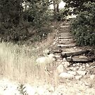 Beach Path by Sunshinesmile83