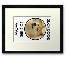 Such Doge Framed Print