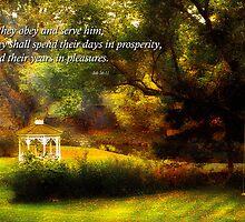 Inspirational - Prosperity - Job 36-11 by Mike  Savad