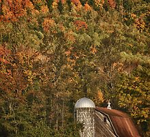 Barn in the forest at fall autumn in the american NW rural landscape fine art color - Colore nel tempo by visionitaliane