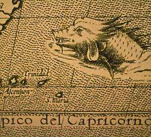 Tropico del Capricorno by Thad Zajdowicz
