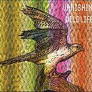 Peregrine Falcon #1 by Dick  Iacovello