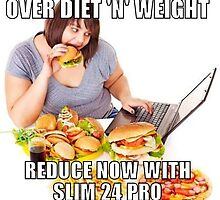 Melt away extra fat with slim 24 pro by buyslim24pro