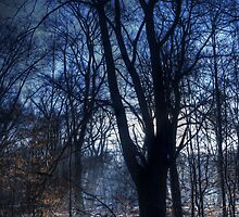 Epping Forest in Winter Oil Effect by Nigel Bangert