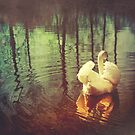 Swan Lake by PaperPlanet