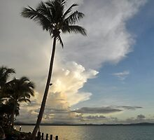 Beautiful Fiji by Margaret Stevens