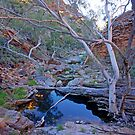 Irnalanga Gorge by Harry Oldmeadow
