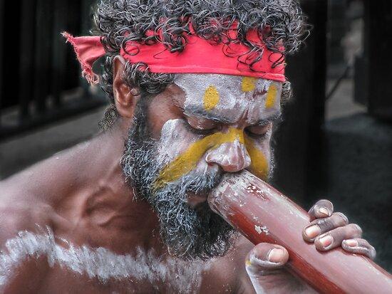 Aboriginal Playing Didgeridoo by Jola Martysz