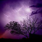Lightning Tree by kurrawinya