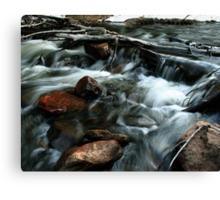 H2o Smoothie Canvas Print