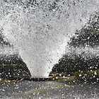City of Vincent Hyde Park Fountain Perth WA by Sunchia Milic
