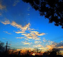 Sunset and Telephone Lines by Sandra  Aguirre