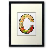 The Letter C Framed Print