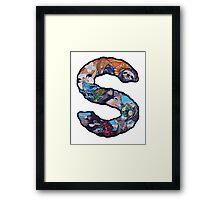 The Letter S Framed Print
