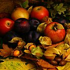 Autumn fruits by smcneem