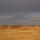 Autumn Prairies by Kathi Arnell