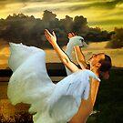 "Leda and the Swan by Antonello Incagnone ""incant"""
