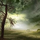 Equine Silhouettes by Igor Zenin