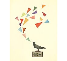 Pigeon Radio Photographic Print