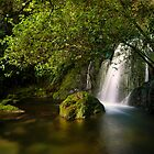 Whataroa Hidden Fall by Ken Wright
