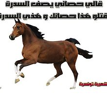 Tunisian saying horse by cherif Nidhal