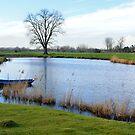 The Leie river (Lys) in Astene, Belgium by 7horses