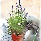 Missy and the Lavender in a pot by Maree  Clarkson