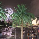 Sydney Welcomes 2014 by Kymbo