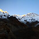 Pre dawn glow on Annapurna South. by Andy Newman
