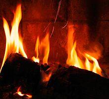 a cozy fire to keep you warm.. by JOSEPHMAZZUCCO