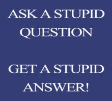 Stupid Question?? Stupid Answer!! by Anninos Kyriakou