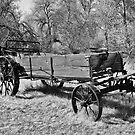 Iron-Wheeled Hay Harvester (BW) by Brenton Cooper