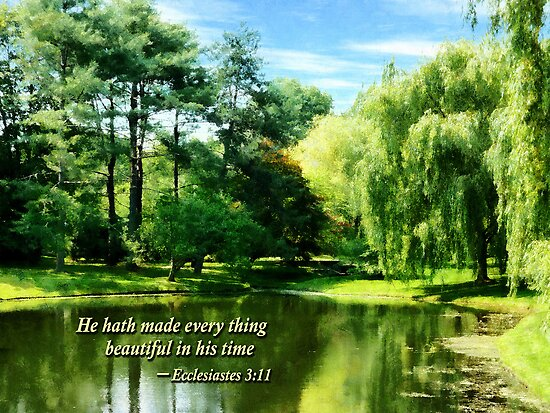 Ecclesiastes 3 11 He Hath Made Evertthing Beautiful by Susan Savad