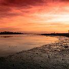 The Estuary by Martina Fagan