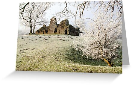 Pendragon Castle by Steve  Liptrot