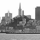 San Francisco Skyline - B&W by Buckwhite