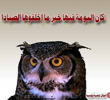 Tunisian saying owl by cherif Nidhal